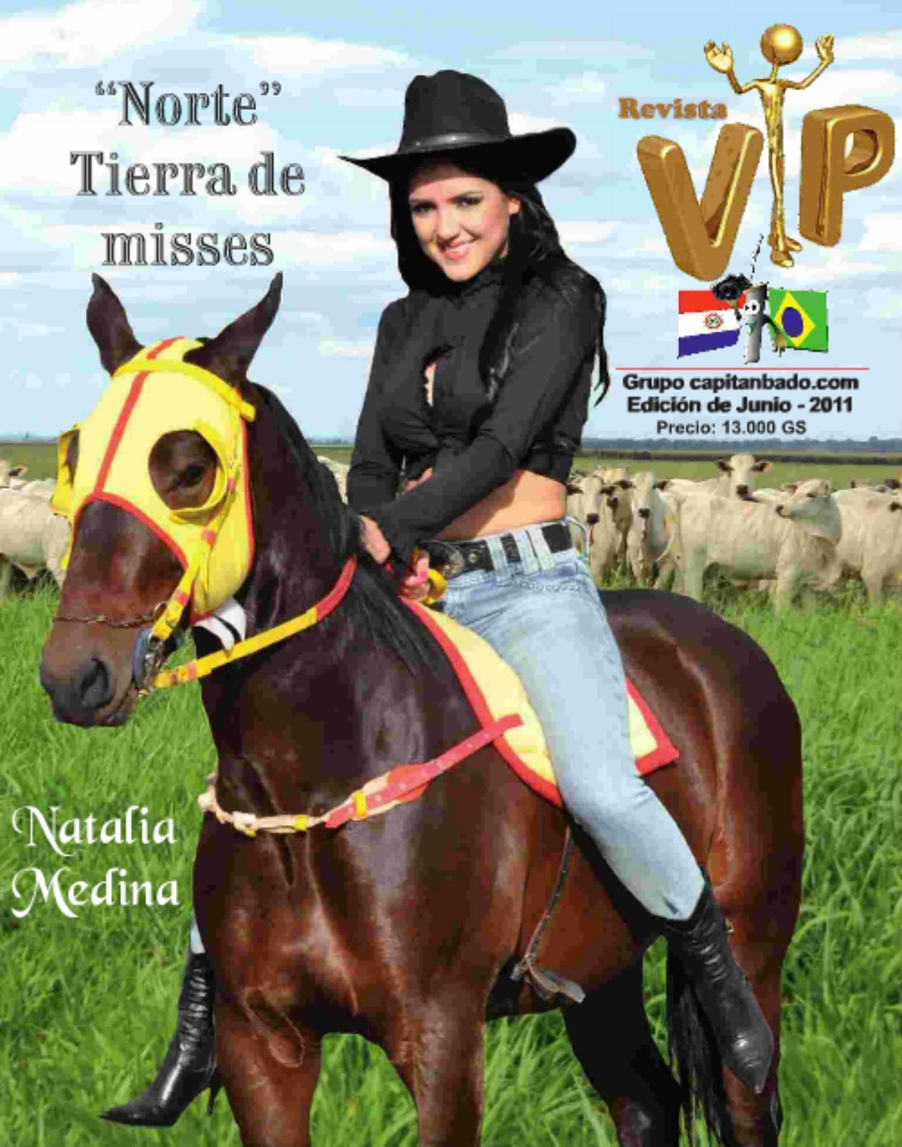 Vip 3 Paraguay